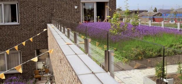 Если параметры крыши позволяют разбить сад, можно подбирать разные варианты озеленения