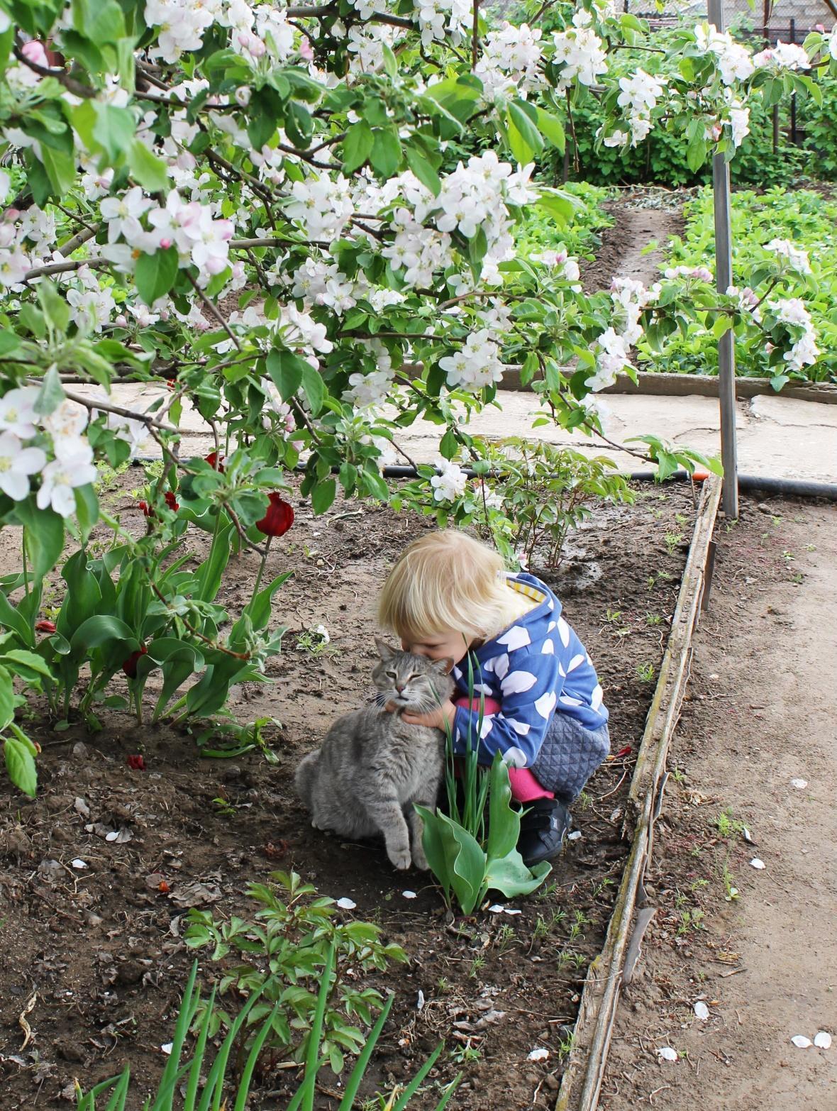 під квітучою яблунею